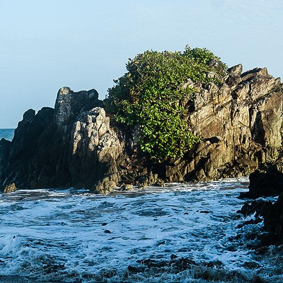 Eco aventura en Isla Iguana